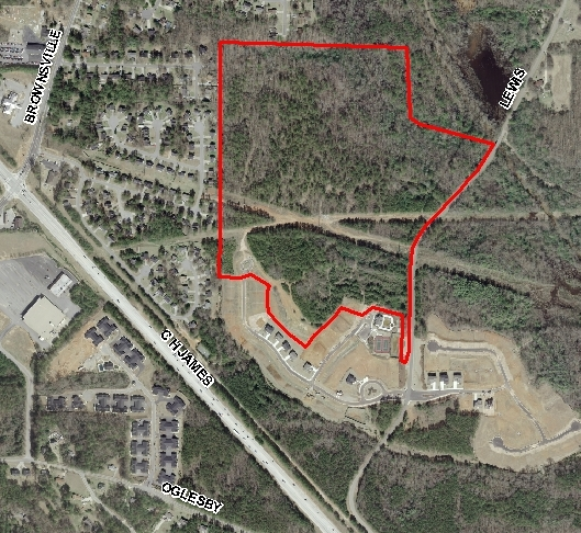 Lewis Road 62 acres